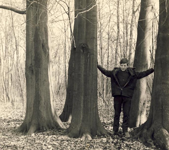 Dans le parc 1964