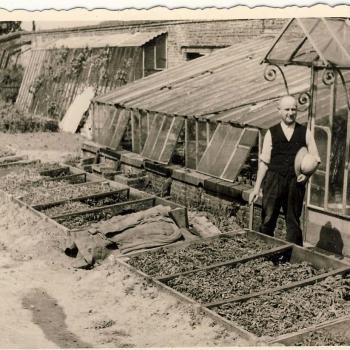 Brat Jardinier devant ses serres en 1960 (Photo René Lapczynski)