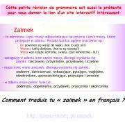 Un peu de grammaire. Comment traduis tu «zaimek» en français ?